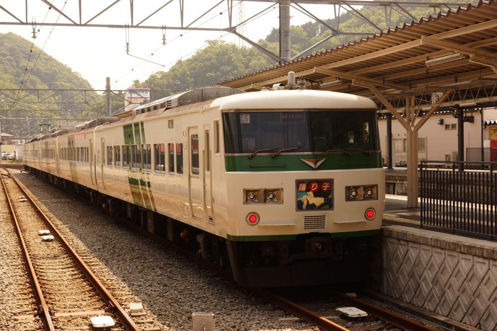 【伊豆箱根鉄道】185系